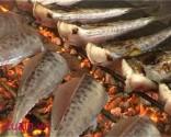 Cá Thu nướng loại II(Khúc đuôi)